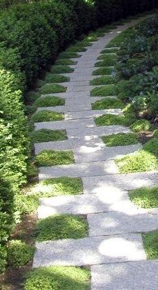 yard backyard paths