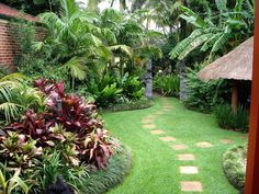 small yard tropical landscape tropical landscaping designs of tampa bay 790x592 in 2363kb landscaping pinterest small yards garden ideas and - Garden Ideas Tropical