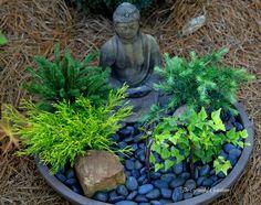 Mini Zen container garden