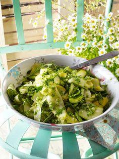 Die Wunderpflanze Moringa - gesund und lecker