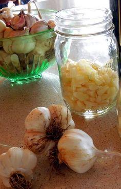 Tintura de alho é ótimo remédio caseiro para gripe, colesterol e hipertensão | Cura pela Natureza.com.br