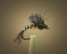 Fly Fish Food: 5 Essential Rules for Tying Flies - tomorrows adventures | tomorrows adventures