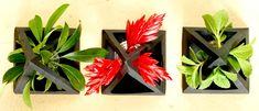 DIY - Paper Terrarium Curatorium