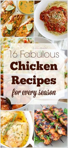 Winter, spring, summer, or fall... here are 16 great chicken recipes for them all!