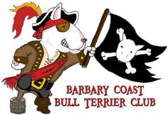 pic of #bull #terrier as a pirate