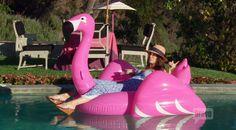 The pool Beverly Hills Hotel, The Beverly, Ivy Restaurant, Mercedes 500, Lisa Vanderpump, Buy Fabric, Celebrities, Pink, Celebs