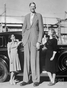 Robert Wadlow The Giant of Illinois is the tallest 272 cm 8 11 person in history. Giant People, Tall People, Jimi Hendrix, Humour Disney, Nephilim Giants, Louis Daguerre, Human Oddities, Rare Historical Photos, Bd Comics