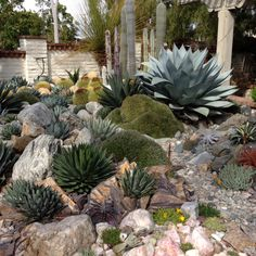 For my front yard re-scaping. Use most of the large rocks and add to the crushed granite base to keep weeds down.