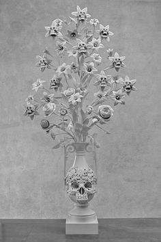 #skull #skulls #skeleton