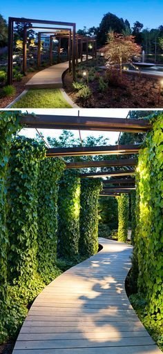 This modern wood pathway is surrounded by ivy covered arches and lit up by overhead lights.