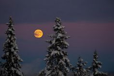 wolf moon pic from NASA