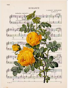 Dictionary art French yellow roses