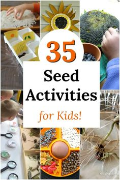 Seed Activities for Kids Fun seed activities perfect for kids of all ages, especially preschoolers! Awesome nature learning and science.Fun seed activities perfect for kids of all ages, especially preschoolers! Awesome nature learning and science. Seed Activities For Kids, Nature Activities, Science Activities, Seed Crafts For Kids, Creative Activities For Kids, Science Crafts, Preschool Science, Preschool Learning, Science Fun