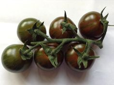 """Tiger great on steak, holds it shape so excellent for cooking. Wrinkles like a passion fruit"" Tomato Seeds, Steak, Nursery, Passion, Shapes, Fruit, Vegetables, Cooking, Kitchen"