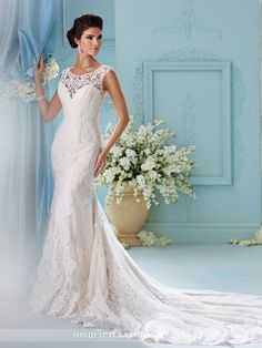 David Tutera - Afina - 216242 - All Dressed Up, Bridal Gown