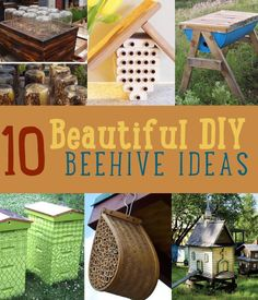 Do you want to learn the secrets of beekeeping? Check out our 10 DIY beehive projects. Try your luck at urban beekeeping with these useful tips and tricks!