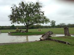 Portion of cross country water jump complex at Willow Draw
