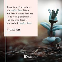 1 John - There is no fear in love, but perfect love drives out fear, because fear has to do with punishment, the one who fears is not made in perfect love. Good Proverbs, Love Drive, Bible Verses, Scriptures, Perfect Love, Verse Of The Day, 1 John, Christian Quotes, Heavenly Father