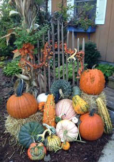 A display featuring pumpkins gives a warm welcome by the front door.