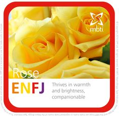 What MBTI plant type are you? ENFJ
