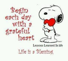 Begin each day with a grateful heart. Life is a blessing. Snoopy on Thanksgiving. Peanuts Quotes, Snoopy Quotes, Peanuts Cartoon, Peanuts Snoopy, Best Quotes, Funny Quotes, Quotes Quotes, Lessons Learned In Life, Charlie Brown And Snoopy