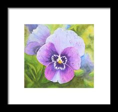 Pansy With Dewdrops Framed Print by Neha Soni.  All framed prints are professionally printed, framed, assembled, and shipped within 3 - 4 business days and delivered ready-to-hang on your wall. Choose from multiple print sizes and hundreds of frame and mat options.