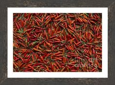 Drying Red Hot Chili Peppers Framed Print By Nola Lee Kelsey
