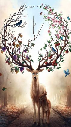Seasons Change - Signed Art Print - Fantasy Deer Painting - Spring Summer Fall Winter - by Jonas Jödicke Mythical Creatures Art, Fantasy Creatures, Cute Animal Drawings, Art Drawings, Deer Art, Fantasy Kunst, Diamond Art, Fantasy Artwork, Fantasy Paintings