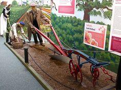 Large Tree Planting, Trees To Plant, Park, Plants, Parks, Plant, Planets