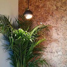 Wall, Plants, Inspiration, Kitchen, Nature, Biblical Inspiration, Cooking, Kitchens, Walls