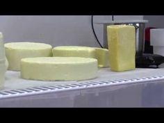 Výroba tvrdých sýrů na kurzu : Domácí výroba tvrdých sýrů - YouTube
