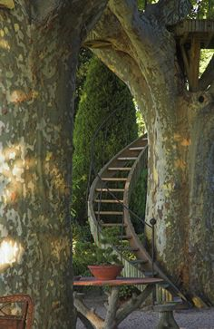 Spiral Staircase Treehouse, Provence, France garden architecture by Dominique Lafourcade France Photos, Stairway To Heaven, In The Tree, Big Tree, Stairways, Garden Landscaping, Landscaping Ideas, Backyard Ideas, Garden Ideas