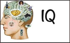IQ stands for Intelligence Quotient, it was derived from the German phrase intelligenz-quotient which was originally coined by psychologist William Stern. It signifies the level of intelligence and ability to learn based on standardized tests.