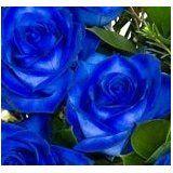 fine jeweltm rose