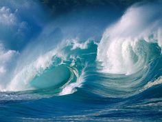 La majesté des océans!