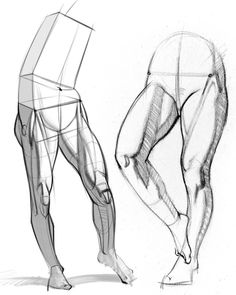 It's time to learn about the inner leg muscles! Up to this point in this course and the figure drawing course, we've been drawing legs as simple cylinders. Drawing Legs, Feet Drawing, Body Drawing, Drawing Muscles, Human Anatomy For Artists, Human Anatomy Drawing, Leg Anatomy, Anatomy Art, Leg Muscles Anatomy