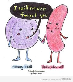 memoria inmunológica no haha Biology Jokes, Medical Jokes, Teaching Biology, Lab Humor, Nerd Jokes, Nerd Humor, Science Puns, Life Science, Science Cartoons