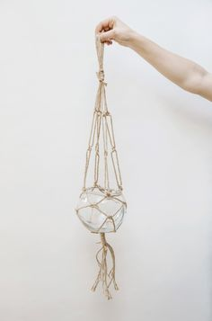 Forest Hanging Glass Bowl Planter: Hanging glass bowl planter. Suitable for planting or for cut flowers.