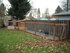 Dog Run - Completed with Dogs Added | Flickr - Photo Sharing!