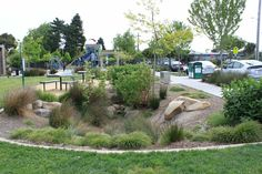 Rain garden in a play ground. It is effective and attractive - and safe. Pond Design, Garden Landscape Design, Garden Landscaping, Trust For Public Land, Sponge City, Landscape Architecture Magazine, Green Play, Pocket Park, Rain Garden