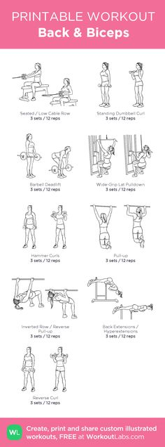 This arm workout can be done at home or in the gym with dumbbells, toning and strengthening your biceps and triceps. This arm workout can be done at home or in the gym with dumbbells, toning and strengthening your biceps and triceps. Big Biceps Workout, Back Workout Men, Back And Bicep Workout, Biceps And Triceps, Back And Biceps, Workout Plans, Bi Workout, Back And Shoulder Workout, Woman Workout