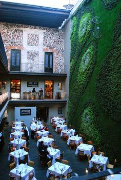 Tita Capotita: Que tal el diseño de este restaurante! en México DF