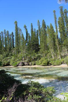 Nouvelle Calédonie – l'île des pins   Passport & Black Coffee