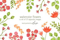 Check out Watercolor Flowers, Floral Clipart by swiejko on Creative Market