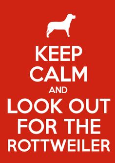 KEEP CALM AND LOOK OUT FOR THE ROTTWEILER