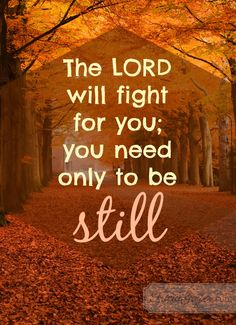 Heavenly Father, thank you for fighting for me. Help me to be still and trust your perfect plan. May I let go of the control I crave and instead cling to you. You never fail me or let me down. Thank you!