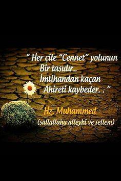 Bir müslüman hiç ölmüyecek gibi çalışıp Her an ölecekmiş gibi ibadet etmeli HAYIRLI SABAHLAR ALLAH DOSTLARI