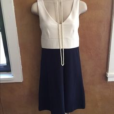 JCrew dress Classic, simple, tailored JCrew dress. Off white and navy blue, zipper back. Perfect for work, business dinners, parties, etc. Never worn, excellent condition! J. Crew Dresses