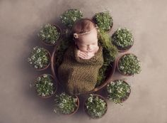 Olive Green Newborn Knit Snuggle Cocoon Sack | Beautiful Photo Props