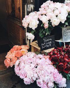 #likefairytales #flowers #floral #flowers shop #colourful #colourful flowers #colours #dekorasyon_trendleri_2018 #Kuaza #dekorasyon_dünyası #dekorasyon_tasarım #dekorasyon_pinterest #dekorasyon_renkler #dekorasyon_önerileri #dekorasyon_fikirleri #dekorasyon_ve_tasarım #dekorasyon_örnekleri #dekorasyon_stilleri #dekorasyon_trendleri_2017 #dekorasyon_instagram #dekorasyon_trendleri #dekorasyon #dekorasyon_ikea #dekorasyon_fikirleri #dekorasyon_modelleri #dekorasyon_görselleri #dekorasyon_salon
